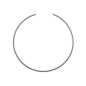 Fiksavimo žiedas
